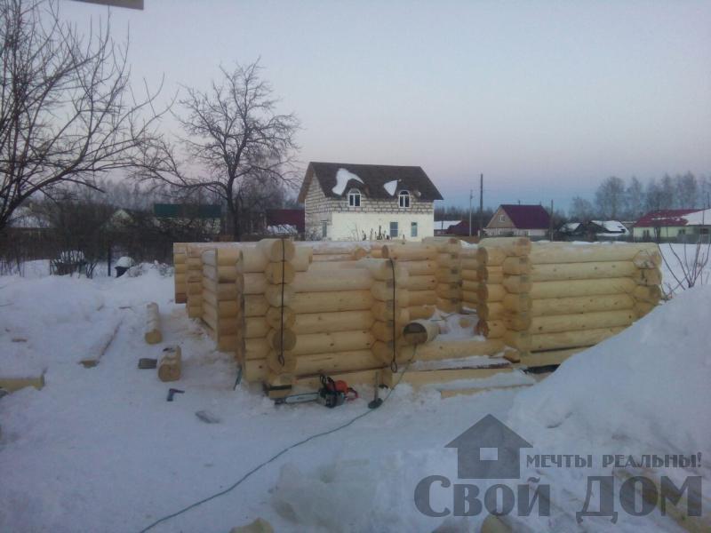 Сборка сруба из оцилиндрового бревна в Ярославле. Фото 5